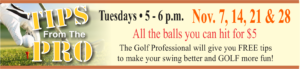 Tips From the Pro. Every Tuesday
